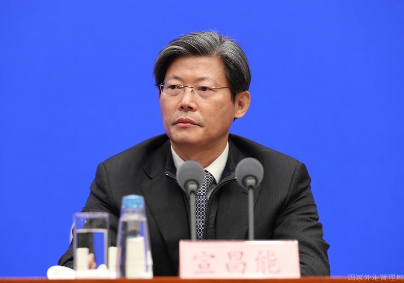 外匯局副局長宣昌能.jpg